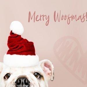 Merry Woofmas!