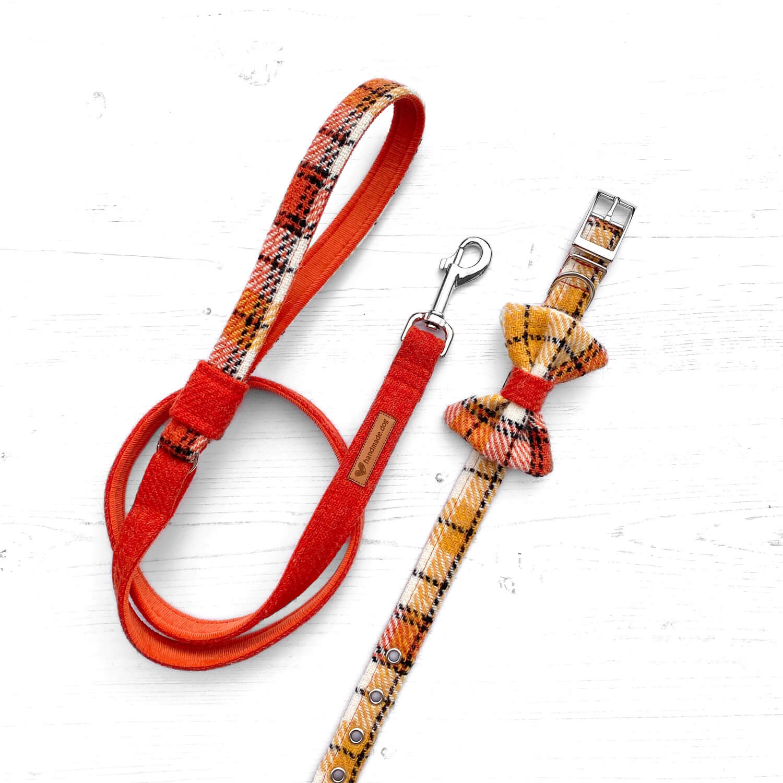 Handmade 'Harris Tweed' Boston dog collar, lead and dickie bow.